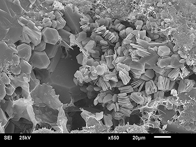 SEM Image of Kaolinite clay